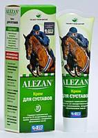 Мазь для суставов лошадей купить харьков алезан разрыв суухожилия коленного сустава
