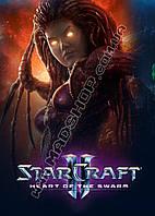 Картина 40х60 см Старкрафт Ведьма