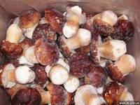 Белые грибы целые замороженные