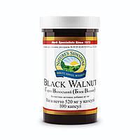 Бад NSP Black Walnut  Грецкий черный орех НСП 100 капсул по 500 мг