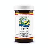 Бад NSP Kelp Бурая водоросль НСП 100 капсул по 530 мг