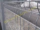 Панельные заборы из сетки в ПВХ, фото 2