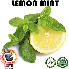 Ароматизатор Xi'an Taima LEMON MINT (Лимон с мятой)