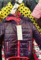 Демисезонная детская курточка в горошек