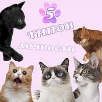 Ученые выявили пять типов кошачьей личности