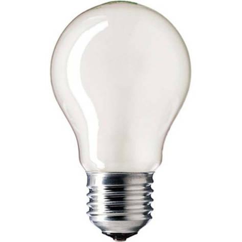 Лампа ЛЗП Volta/Искра А55 230В 100Вт Е27  , фото 2