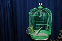 Клетка для мелких попугаев и канареек разноцветные клетки
