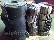 Нории - изготовим нории любой производительности , фото 2