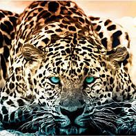 """Картина для рисования камнями Diamond painting Алмазная вышивка """"Холодный взгляд гепарда"""""""