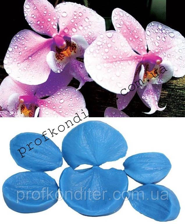 Набор вайнеров Орхидея фаленопсис большой