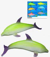 Морские животные Гонконг A009 тянучка 6 видов, 24шт