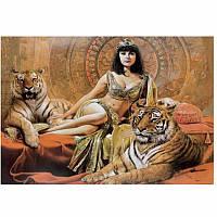 """Картина для рисования камнями Diamond painting Алмазная вышивка """"Укротительница тигров"""""""