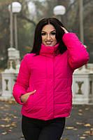 Куртка в спортивном стиле в пяти расцветках 9036