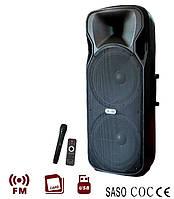 Активная акустика AIL-1502 450W/USB/Радио/2 радиомикрофона