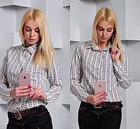 Молодежная модная рубашка 885-03