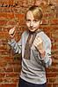 Вишиванка для хлопчика Котигорошко на сірому – довгий рукав