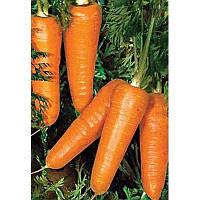Редко семена моркови 100 000 тыс. семян