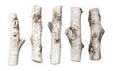 Полена керамические Береза, фото 2