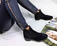Женские ботинки низкие 13,5 см, натуральная замша, синие / ботинки женские весна 2017, стильные