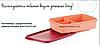 Ланч-бокс с разделителем прямоугольный (24×15,5×5 см) ,Tupperware