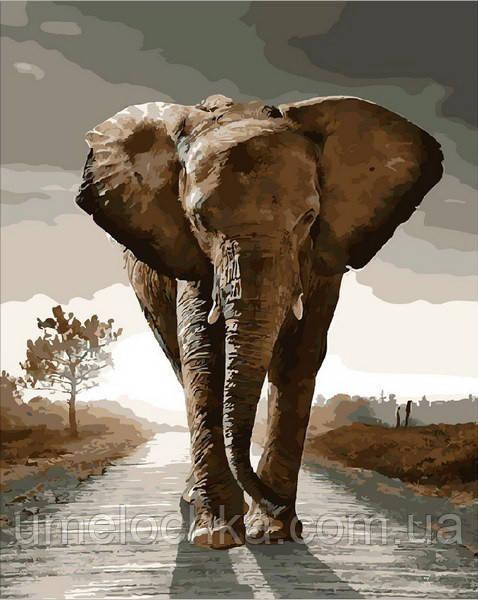 Раскраска по номерам Mariposa Королевский слон (MR-Q1975) 40 х 50 см