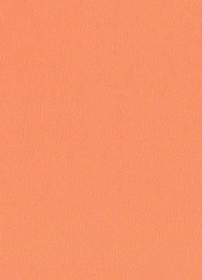 Жалюзи вертикальные. 160*200см. Америка 0333 Оранжевый делаем любой размер, фото 2