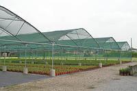 Купить Затеняющая сетка 60 % (Польша) 6м*50 м