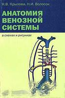 Н. В. Крылова, Н. И. Волосок Анатомия венозной системы в схемах и рисунках