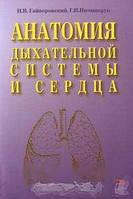 Гайворонский И.В., Ничипорук Г.И. Анатомия дыхательной системы и сердца