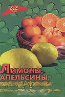 Л. И. Самсонова Лимоны, апельсины, мандарины и их целебные свойства