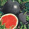 Семена Арбуза Ред Стар F1, 1000 семян