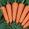 Морковь Канада F1, фото 2