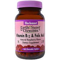 Bluebonnet Nutrition, Экстракт цельных плодов граната, 60 капсул
