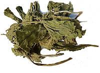 Листья Подорожника большого 100 грамм (Plantago major)