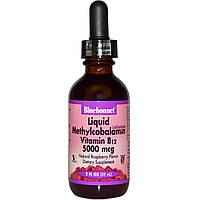 Bluebonnet Nutrition, Жидкий метилкобаламин, Витамин B12, Натуральный вкус малины, 5000 мкг, 2 жидких унции (5