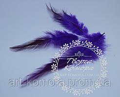 Перья фиолетовые удлиненные