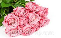 Букет долгосвежих роз Розовый Кварц,подарок любимой