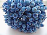 Ягоди цукрові сині 12 мм, фото 2