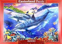 Пазлы Castorland Лагуна дельфинов C-300259, 3000 элементов