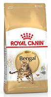 ROYAL CANIN Сухой корм для кошек бенгальской породы Bengal Adult 10кг