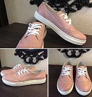 Кеды! Timberland oxford женские Кожа натуральная кроссовки туфли обувь