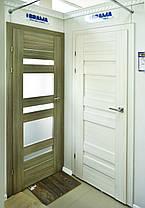 Двери Брама Модель 19.1, фото 2