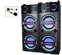 Концертные колонки DP-246 с радиомикрофонами/USB/Bluetooth