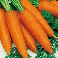 Семена Моркови Редко F1, 100 000 семян