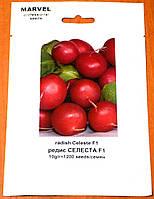 Семена Редиса Селеста F1 (Голландия), 1200 семян., фото 1