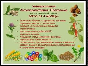 Универсальная антипаразитарная программа Choice (Украина), фото 3