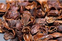 Кофейная ягода каскара - оптимальный компромисс между кофе и чаем