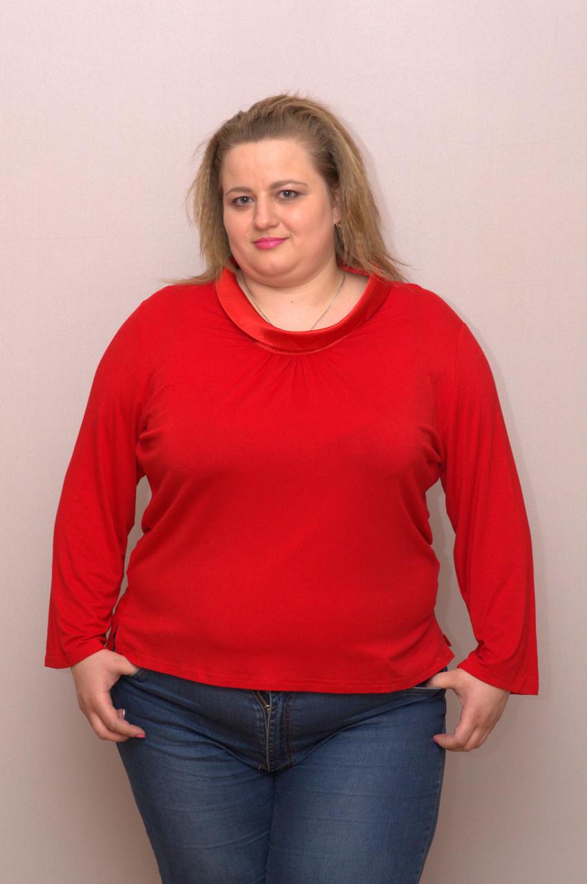 Блуза женская больших размеров, коттоновая стрейчевая NATALI, Турция
