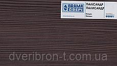 Двері Брама Модель 19.25, фото 2