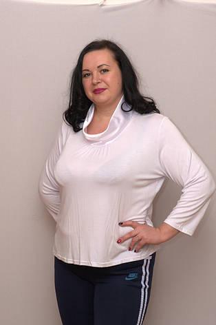 Блуза женская NATALI, фото 2